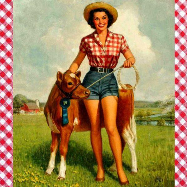 Howdy plaatje van cowgirl in denim shorts en rood geruitte blouse passend bij EllyMay 'wired' haarband